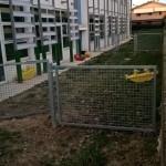 La scuola dell'infanzia di Marotta viene trascurata