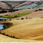 Ruralità e multimedialità, se ne parla a Corinaldo