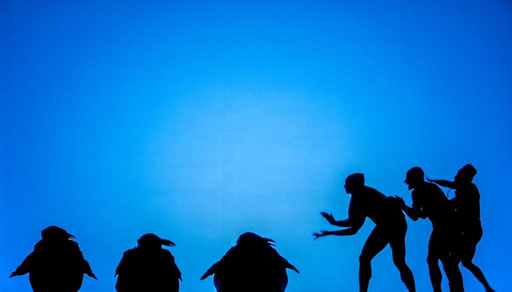 Le magiche ombre danzanti dei Catapult a Urbino