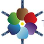 La giornata mondiale del tennistavolo al Centro Olimpico