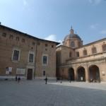 L'Università degli Studi di Urbino Carlo Bo ha attivato il Master in Scienza della Riproduzione