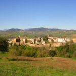 Serra de' Conti punto di riferimento regionale di Slow Food