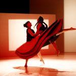 Martedi a Urbino va in scena la danza