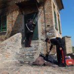 Anziana donna muore carbonizzata nella sua villa di Senigallia