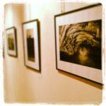 Il mese di maggio dedicato alle Giornate di fotografia