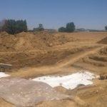 Avviata la campagna di scavi nel Parco Archeologico di Suasa