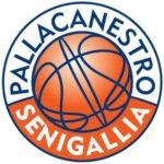 La Pallacanestro Senigallia inizia a prendere forma in vista della stagione 2016/2017