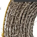Porte aperte allo scambio al Museo Diocesano di Jesi