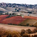 """""""Senigallia e Morro d'Alba insieme: più risorse, migliori servizi ai cittadini e nuove opportunità economiche"""""""