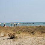 SENIGALLIA / Sulla spiaggia di Ponente c'è ormai la necessità di realizzare una zona protetta