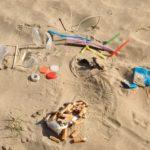 SENIGALLIA / L'importanza di salvaguardare la spiaggia di Ponente