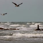 SENIGALLIA / Tante emozioni e sensazioni sulla spiaggia durante la mareggiata autunnale