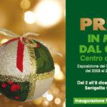 """SENIGALLIA / All'Expo Ex la mostra dei presepi del centro diurno Alzheimer """"Il Granaio"""""""