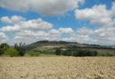 E' scontro tra Coldiretti e Provincia di Pesaro Urbino, scatta la mobilitazione degli agricoltori