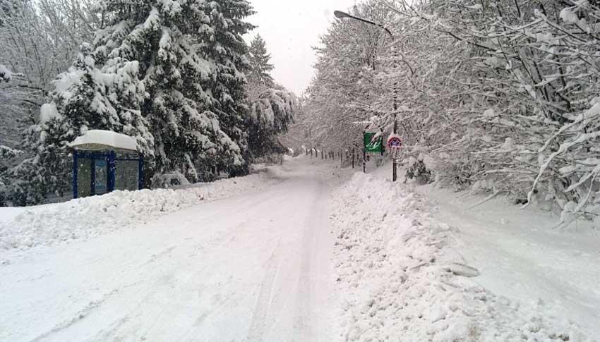 Mercoledì scuole chiuse in oltre 30 Comuni della provincia di Pesaro Urbino