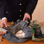 Operazione antidroga della polizia a Fano e Urbino: arrestate due persone, una  terza espulsa