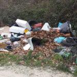 Sono sempre di più i rifiuti abbandonati lungo le strade di Senigallia