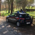 Due ragazzi sorpresi a Belvedere Ostrense dai carabinieri con sostanze stupefacenti