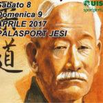 """In programma domenica il quinto trofeo di judo tradizionale """"Città di Jesi"""""""