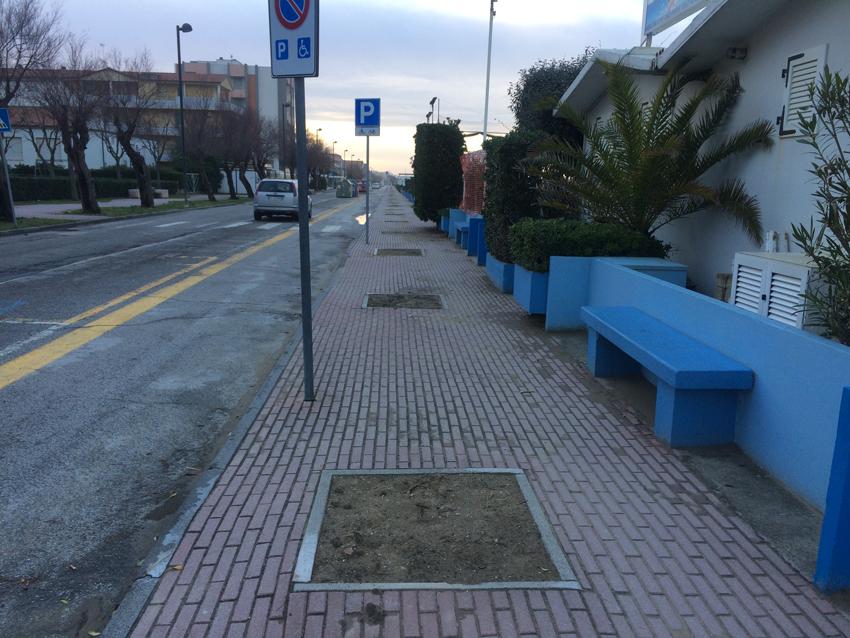 """Il M5S propone di realizzare a Marotta una """"spiaggia delle tamerici"""""""
