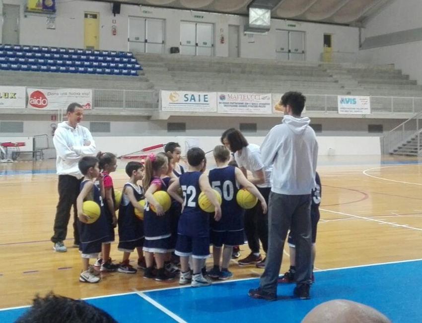 A Urbino il corso di aggiornamento per istruttori di minibasket