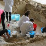Gli studenti della Scuola di Restauro di Ravenna faranno attività di laboratorio al Parco di Suasa