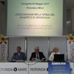 Diabetici in continuo aumento anche a Senigallia