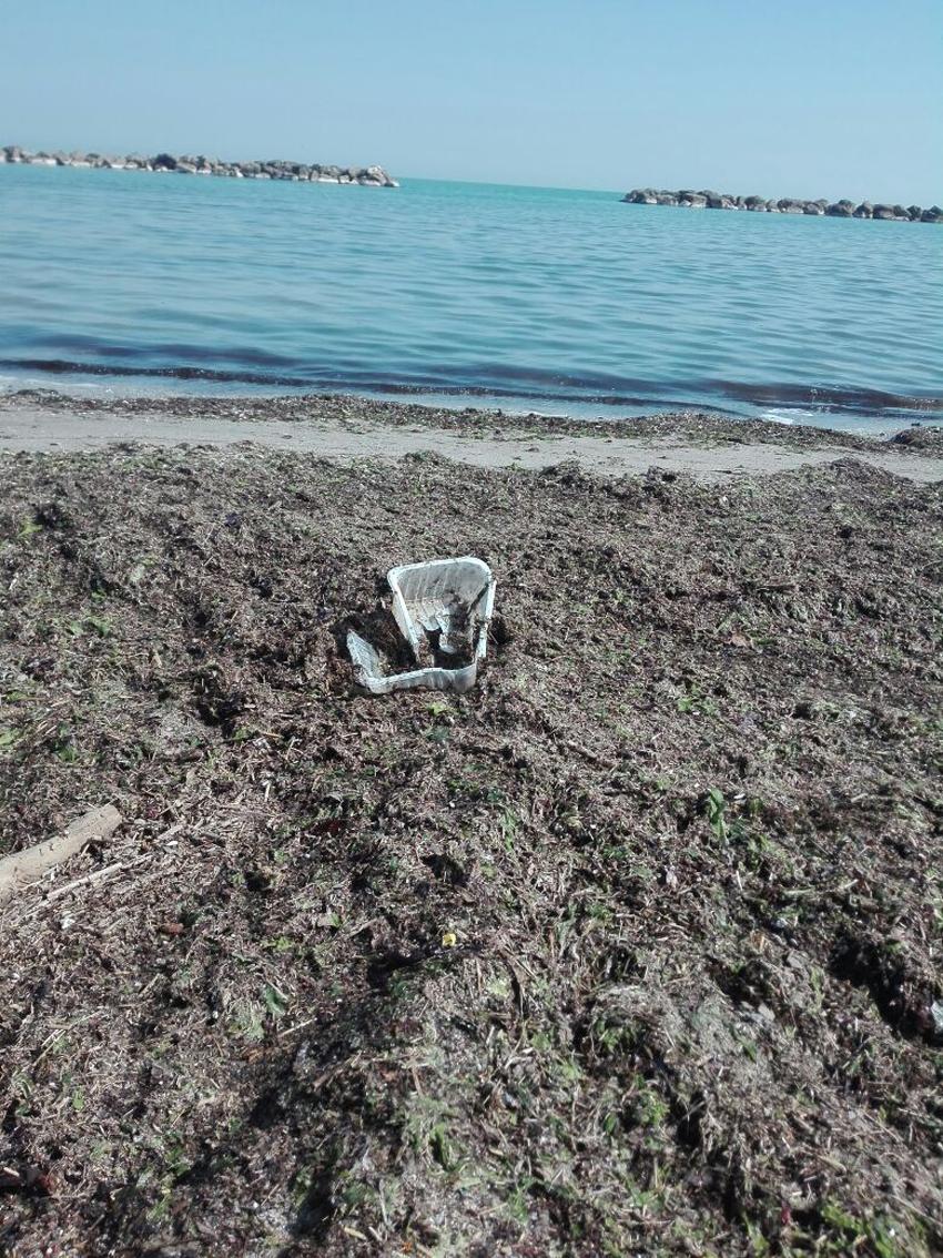 Rifiuti in aumento lungo le spiagge marchigiane