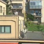 URBINO / La Polizia denuncia due studenti universitari