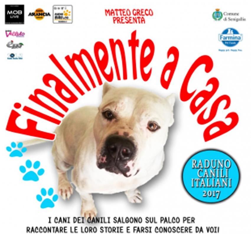 SENIGALLIA / Sabato e domenica al Foro Annonario iniziative per incentivare le adozioni dei cani