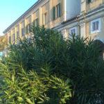Città Futura propone a Senigallia un progetto organico e integrato per il verde urbano e la viabilità ciclo-pedonale