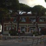 L'abbattimento dei pini nell'area ospedaliera: gli ambientalisti chiedono spiegazioni al sindaco di Senigallia