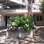 Senigallia Bene Comune invita il direttore dell'Utic, Mariani, a rinviare la chiusura