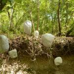 Land Art al Furlo, sabato si conclude l'VIII edizione con un ricco programma di iniziative