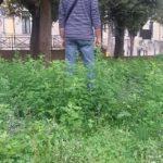 A Mondolfo il Parco della Rimembranza versa in uno stato di totale abbandono