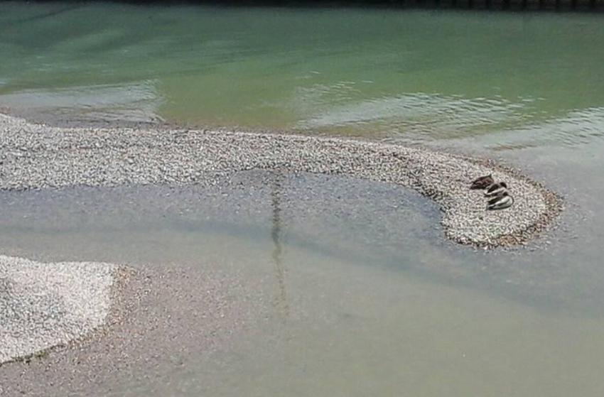 "Senigallia Bene Comune: ""Sul fiume Misa ennesima figuraccia di Mangialardi in Regione"""