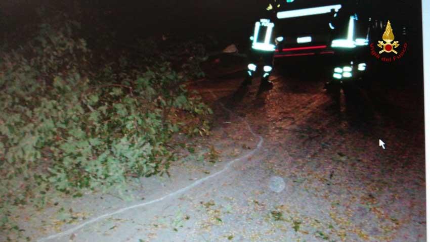 Numerosi interventi dei vigili del fuoco per il forte vento che ha colpito la provincia di - Spostamento cavi telecom dalla facciata di casa ...