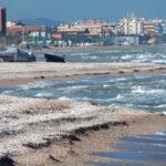 L'erosione marina causa troppi danni a Marotta: l'Amministrazione comunale interessata alle proposte presentate dai tecnici del Movimento 5 Stelle