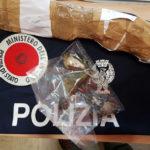 Cacciatore denunciato dalla polizia di Urbino dopo aver sparato a tre fringuelli, specie protetta