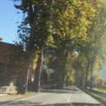 Quasi 14 milioni di euro nei prossimi 5 anni saranno investiti sulle strade della provincia di Pesaro