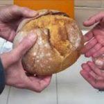 Venerdì la Conferenza San Vincenzo de Paoli presenterà il progetto per la distribuzione gratuita del pane a chi ne ha bisogno