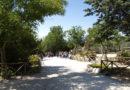 Il Parco Zoo di Falconara in prima linea nella tutela delle foreste