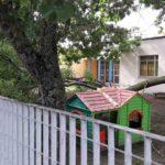 """Nicola Peverelli: """"Per l'incuria dell'Amministrazione comunale di Trecastelli alla scuola dell'infanzia di Ponte Rio si è rischiata una tragedia"""""""