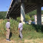 Sopralluogo di Tagliolini e Feduzi sui ponti Pieve e Ca' Vanzino a Fermignano, lungo la Metaurense in via di trasferimento all'Anas