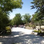 Al via al Parco Zoo di Falconara la stagione degli eventi