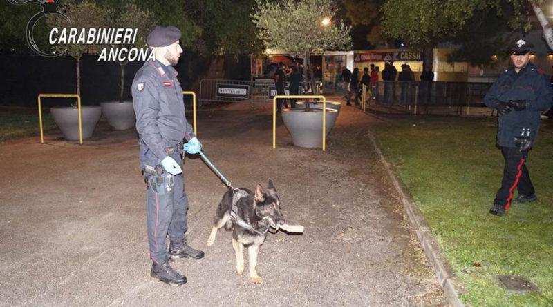 Carabinieri in discoteca a Senigallia per controllare i giovani avventori